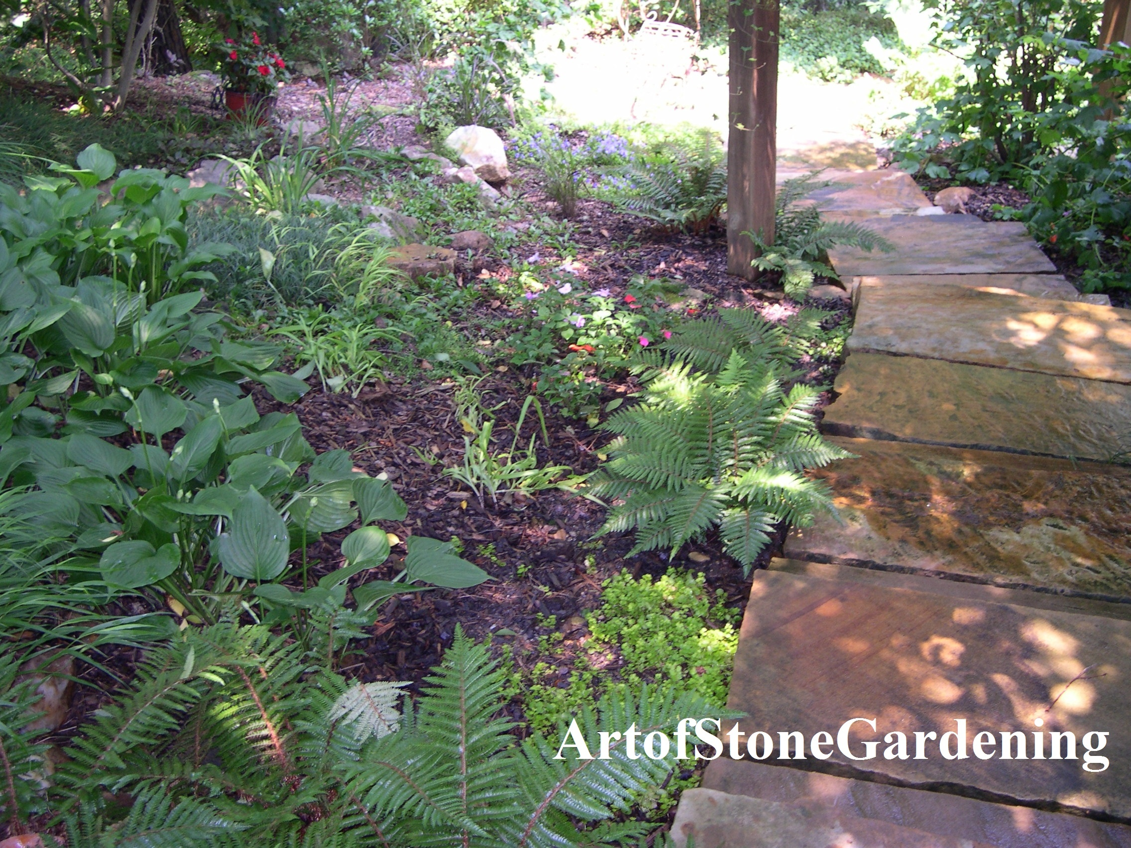 shade garden and stone steps