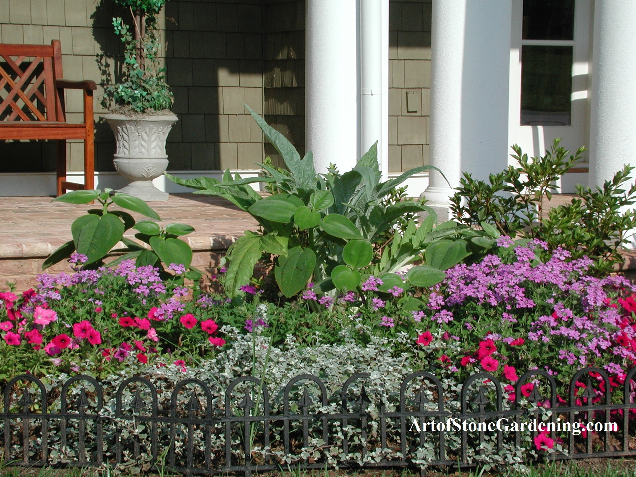 Summer annuals in Gainesville