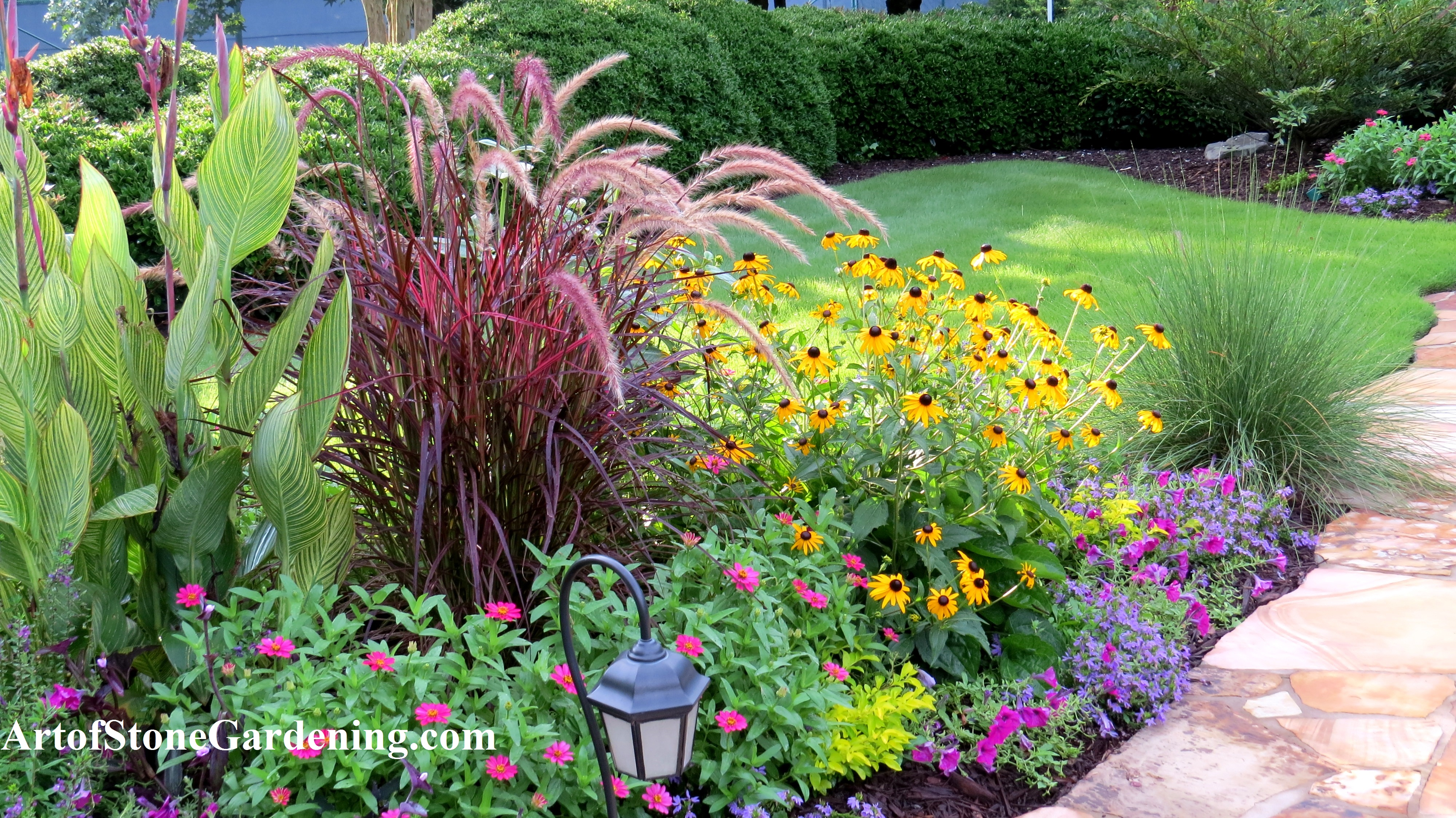 Colorful summer annuals in Dawsonville, GA