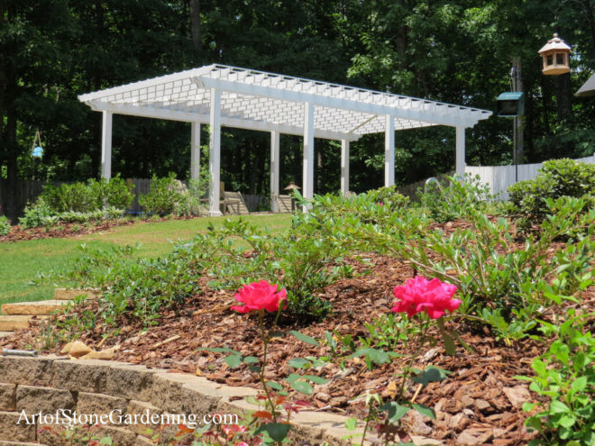 Arbor and rose garden