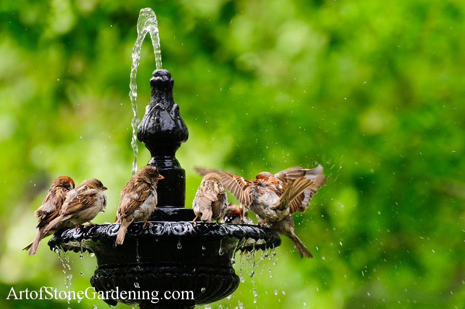 Water Fountains, Water Features for Bird and Wildlife Gardens