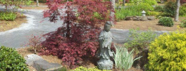 Gardening Ideas: Color in the Winter Garden