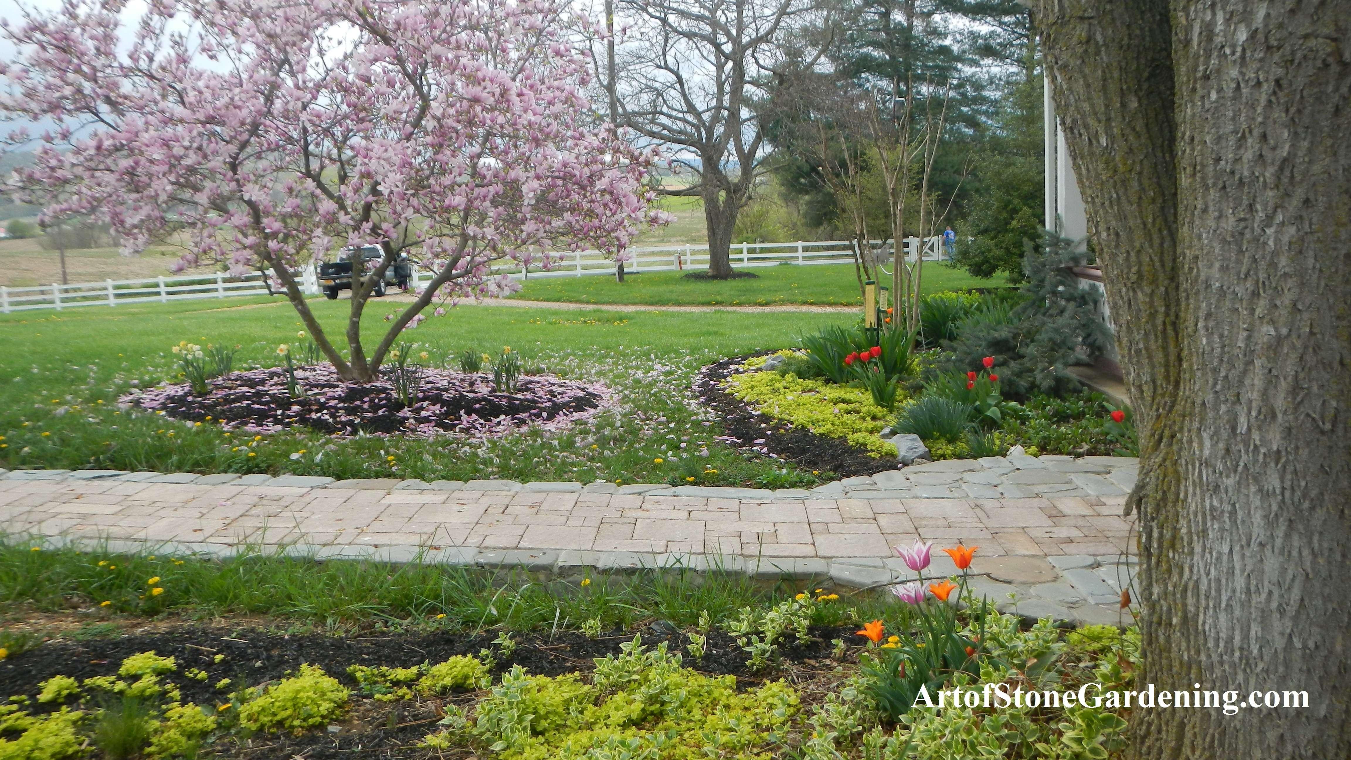 Spring blooming at farmhouse