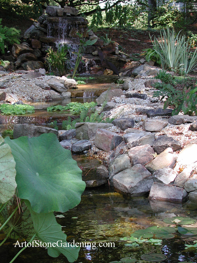 Shade water feature and garden