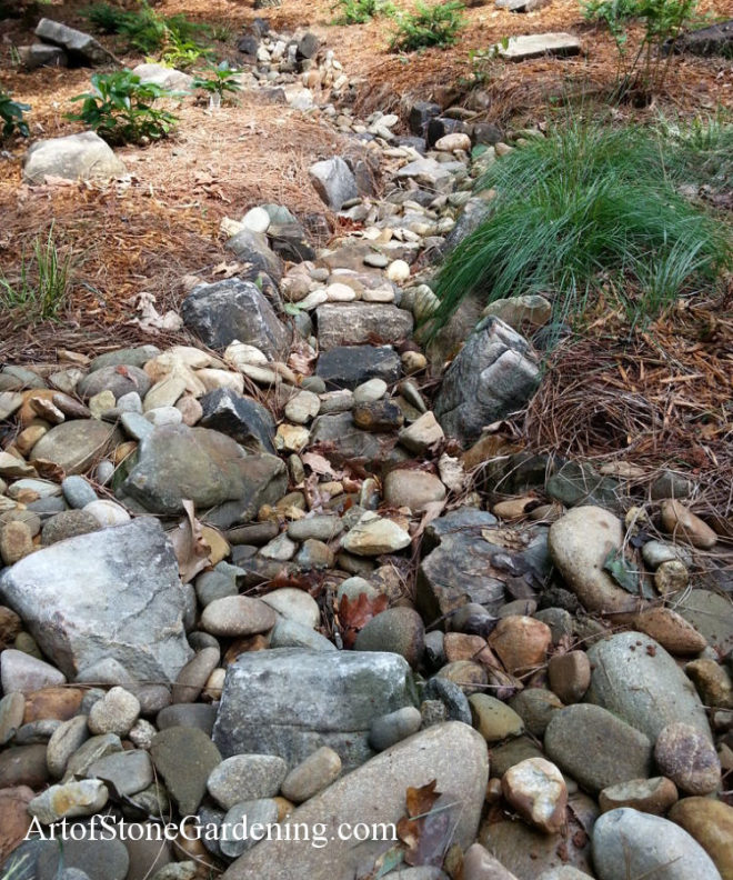 Dry creek bed in the shade garden