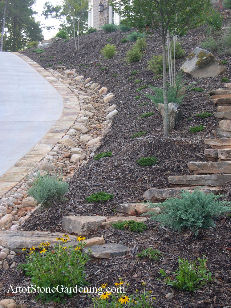 Dry creek bed and steps in Dahlonega