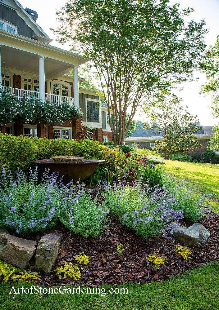 Perennial garden in Gainesville, GA
