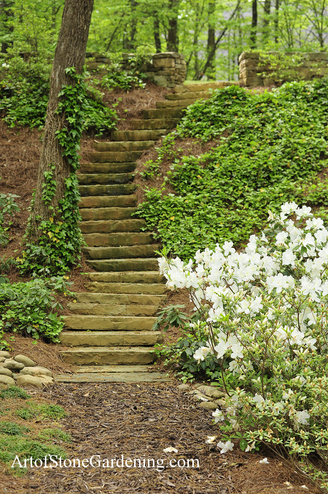 Stone steps for access