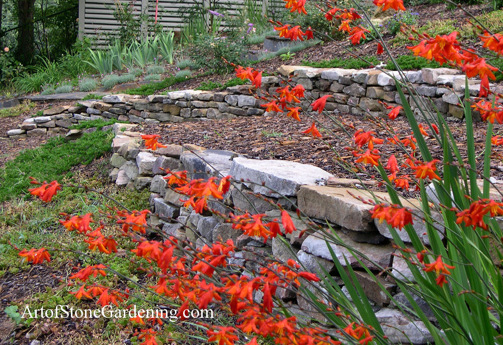 Terraced walls in Gainesville