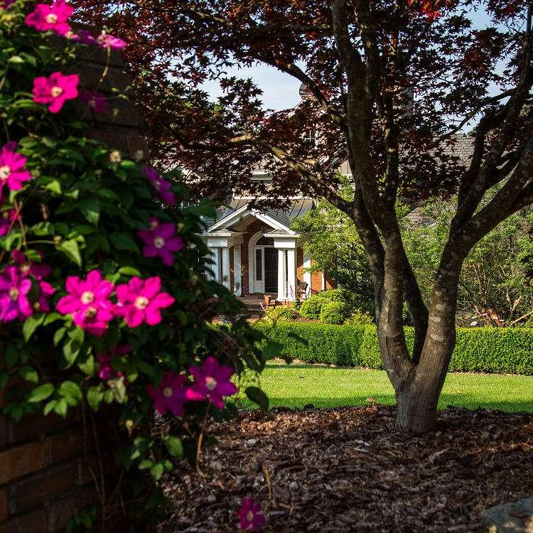 Garden maintenance in Gainesville GA